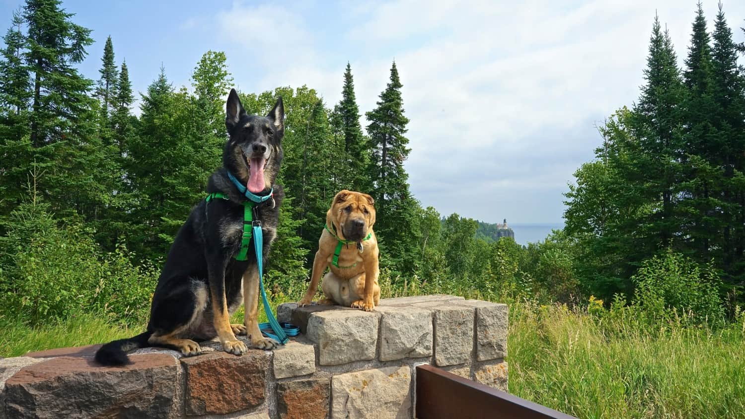 Best Pet Attractions in Minnesota: Split Rock Lighthouse State Park |  GoPetFriendly.com