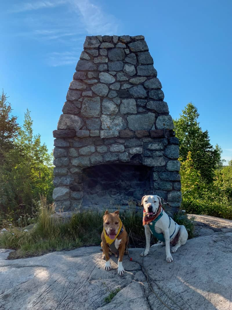 A brown dog and white dog sitting in front of a stone fireplace on top of the Day Hill Trail in Split Lighthouse State Park in Minnesota