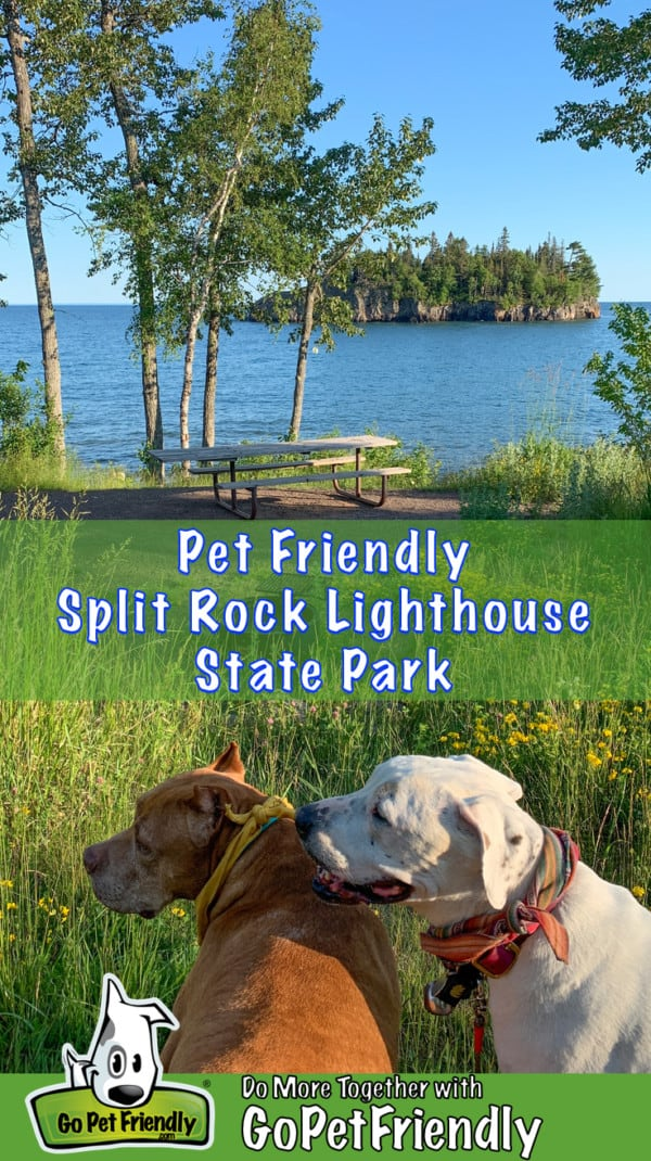 Two dogs in a picnic area suitable for pets at Split Rock Lighthouse State Park, Minnesota