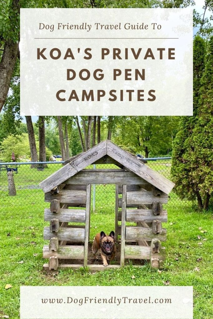 pen for dogs